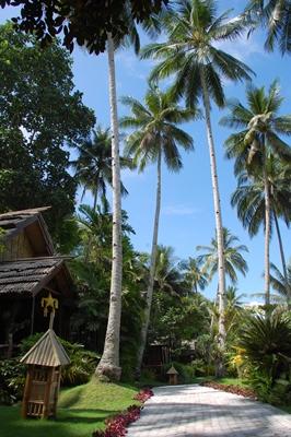 Davao - Queenie Chua - Dreamstime.com