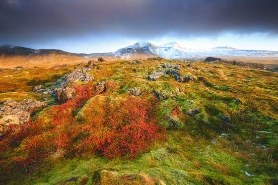 Jes Reyes Wild Colours Snæfellsnes, ICELAND