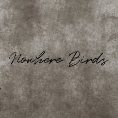Artist Spotlight: Nowhere Birds